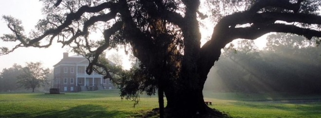 featuredimage-visit-groundsandnaturewalks-01-1020x377