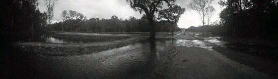 Drayton Hall Ponds